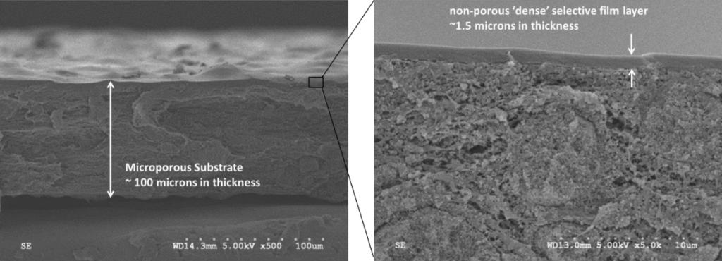 Поперечная микроскопия мембраны Core